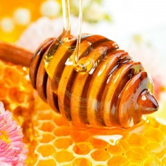 About Eucalyptus honey